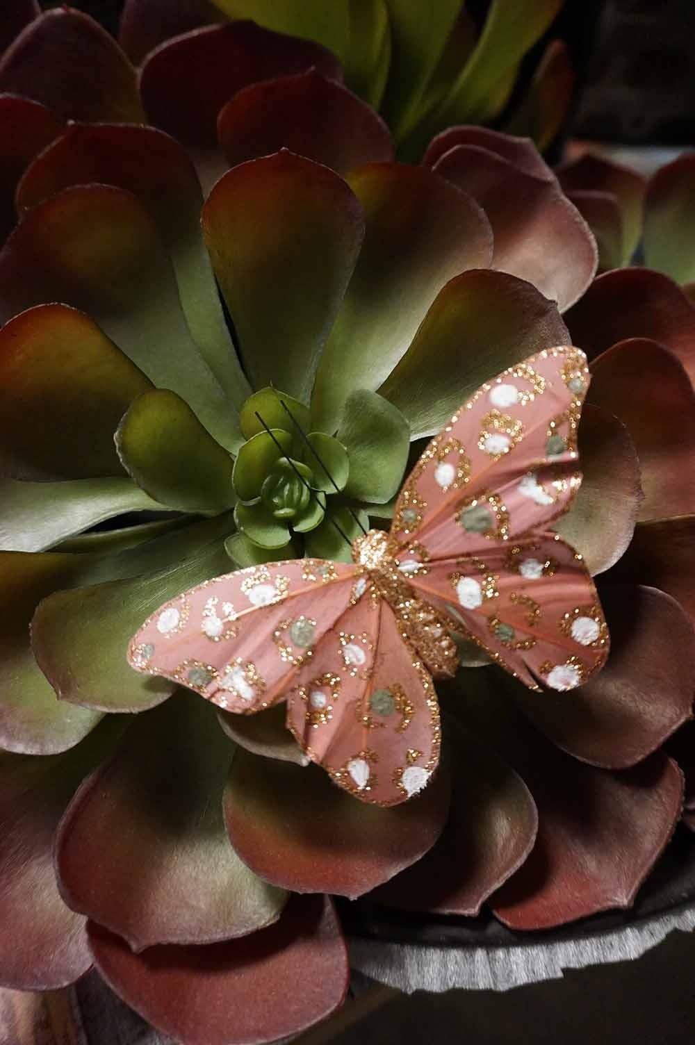 Fjäril, 4-pack, rosa, senapsgul, mörk aprikos, nougat-lila