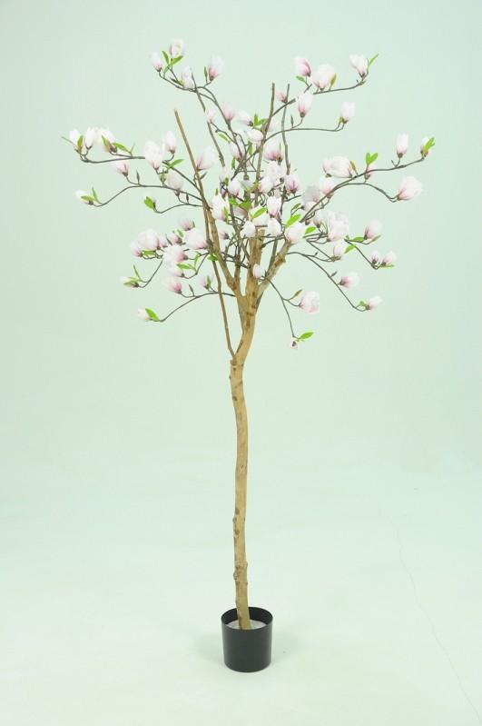 Magnolia träd, konstgjort