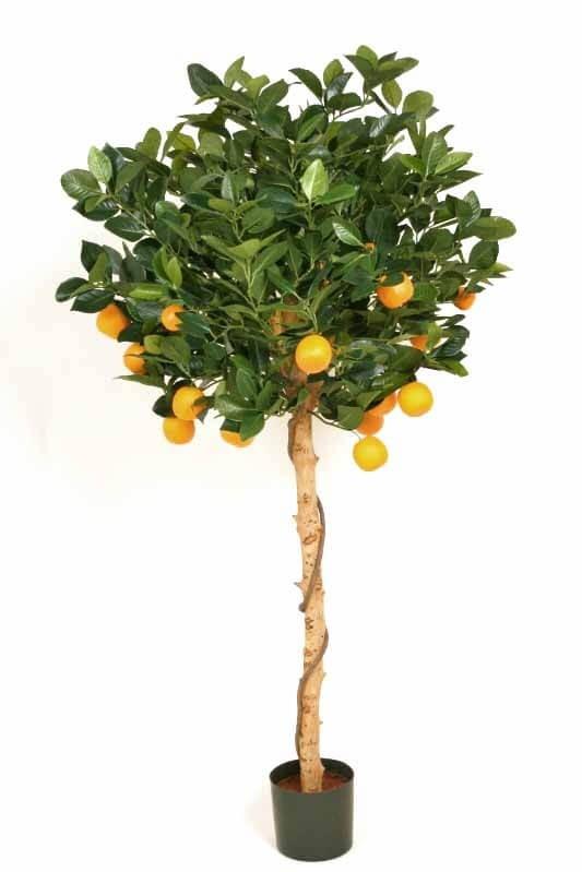 Apelsinträd, konstgjort träd