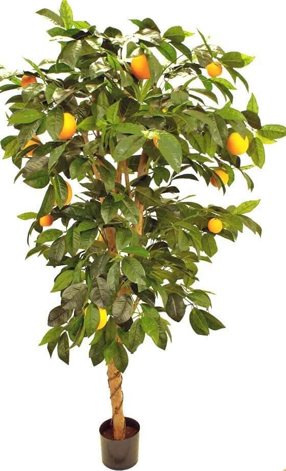 Apelsinträd, konstgjord växt