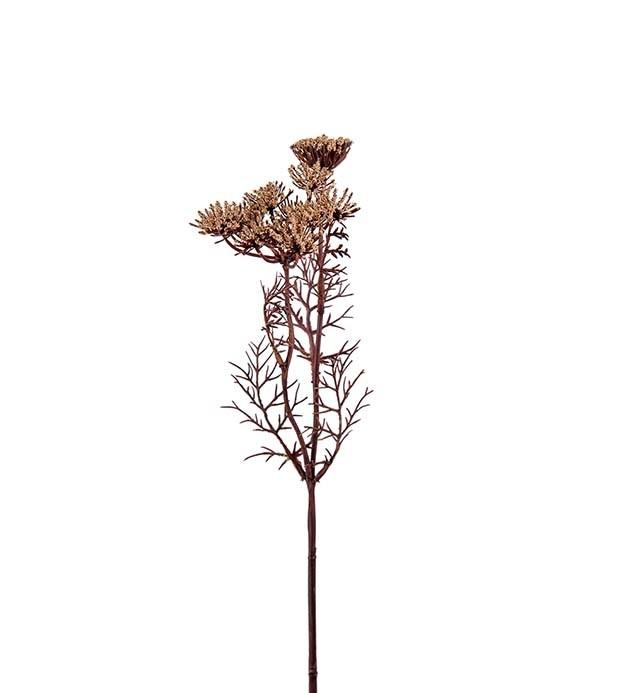 Trachelium, beige, konstgjord blomma