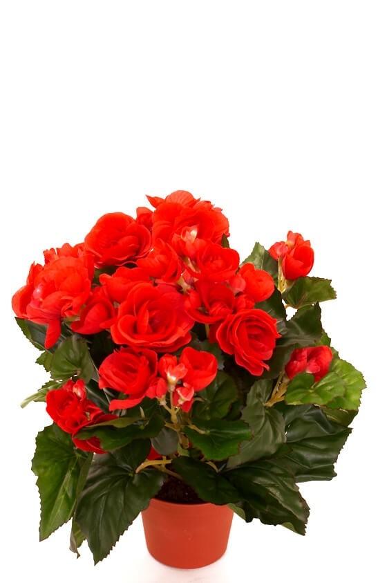 Begonia, röd, konstgjord blomma