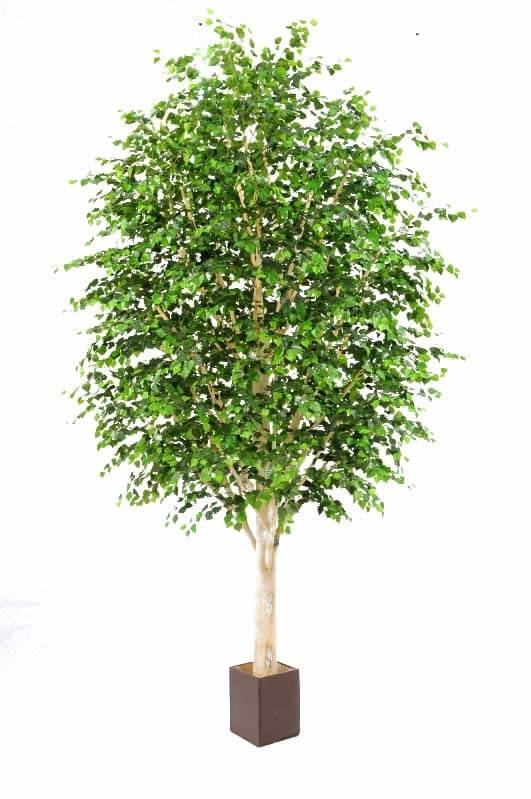 Björk, konstgjort träd