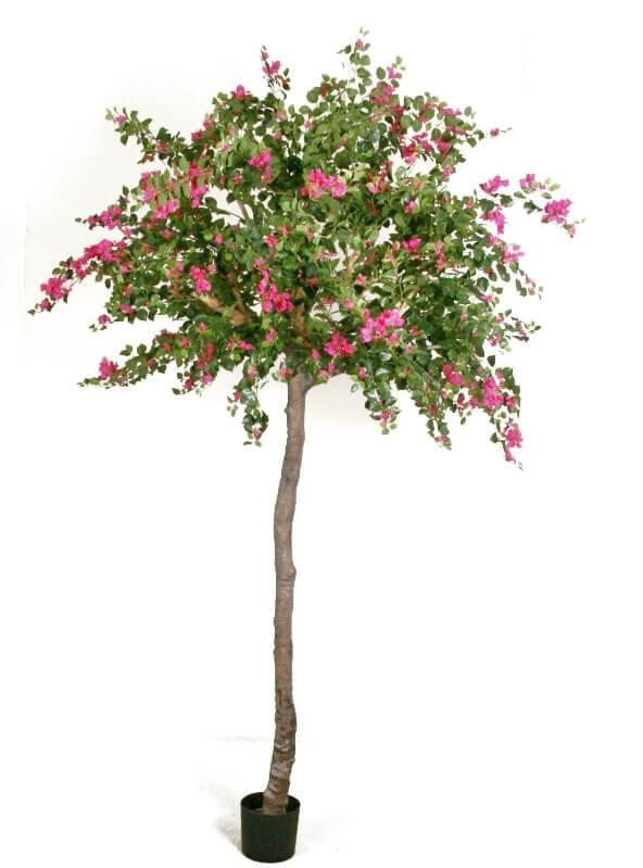 Bougainvillea, konstgjort träd