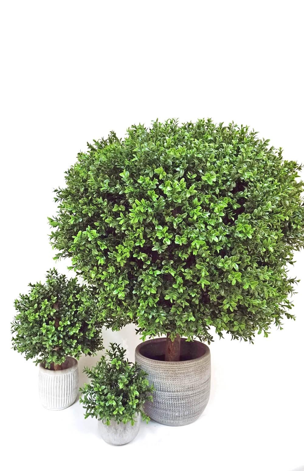 Buxbom på stam i kruka, konstgjord växt, ovalt formad