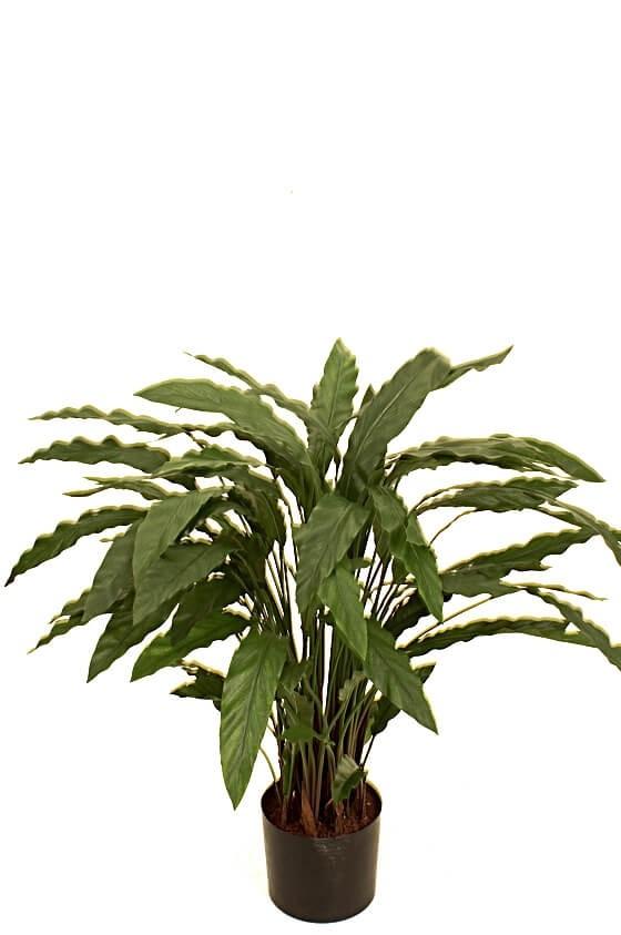 Calla, konstgjord grön krukväxt