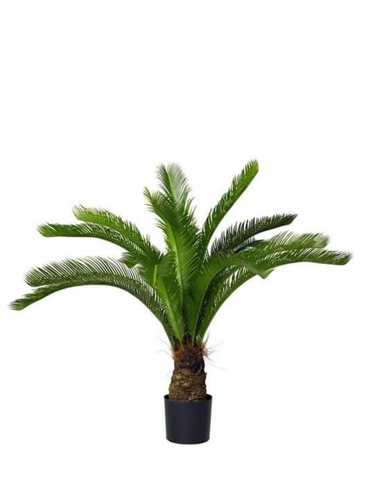 Cykas palm, konstgjord