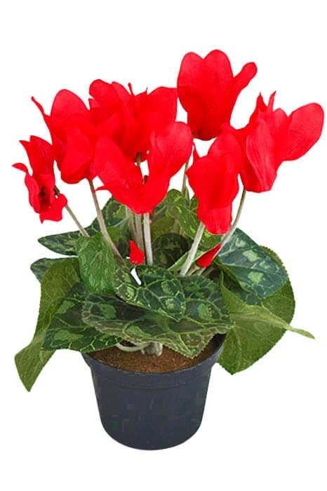 Cyklamen mini, röd, konstgjord krukväxt