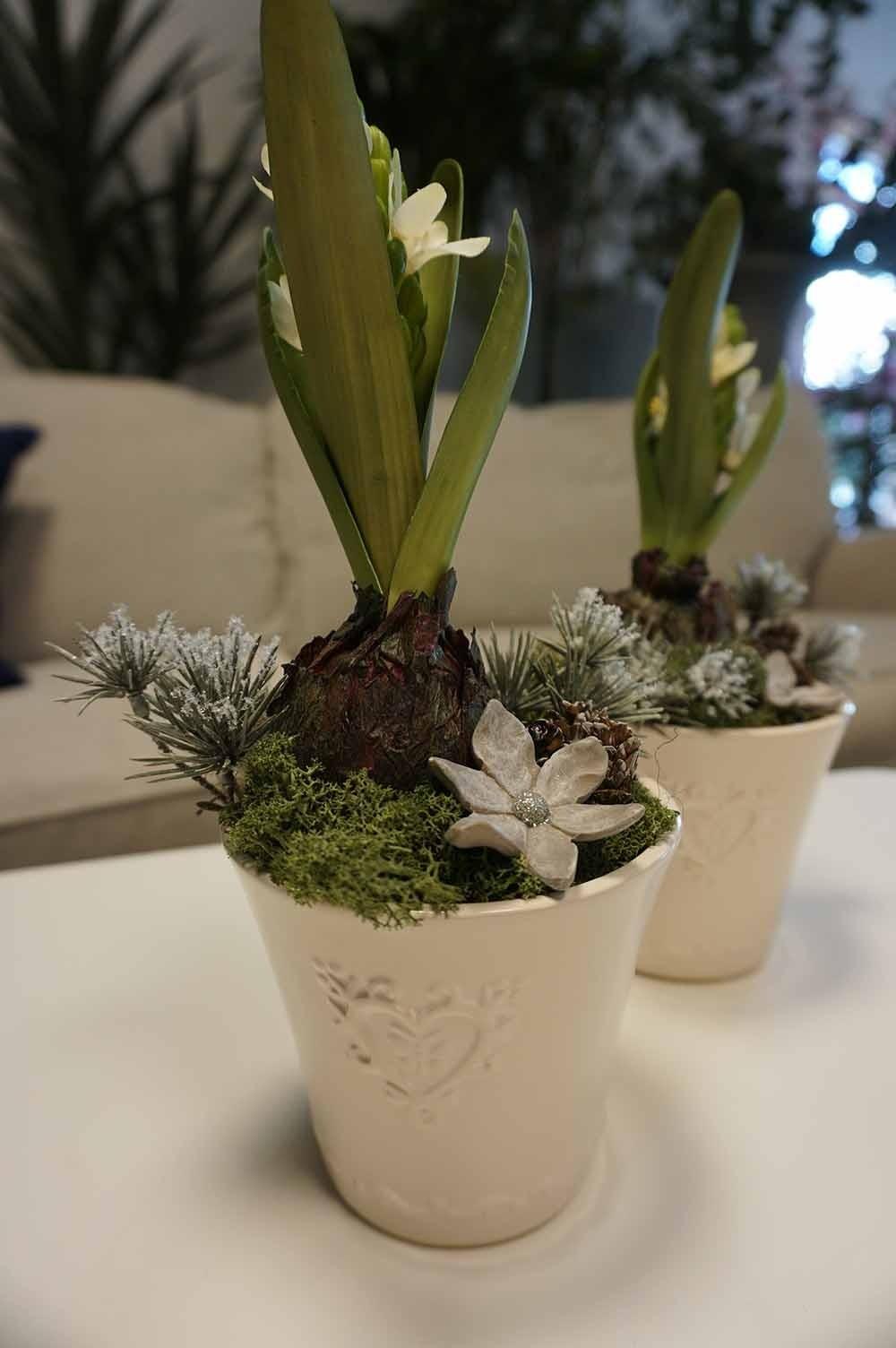 Konstgjord plantering med hyacint på lök