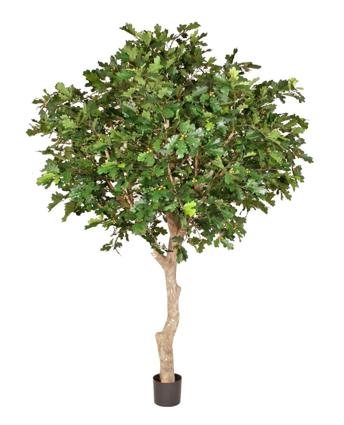Ek, konstgjort träd, 350cm