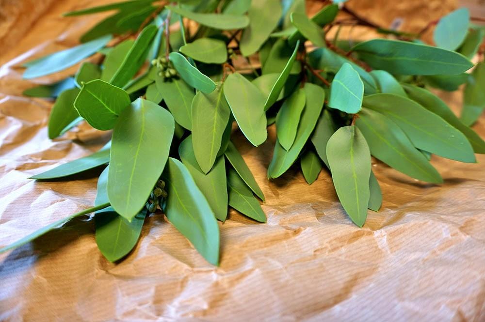 Eucalyptus, Real Touch, konstgjord grön kvist