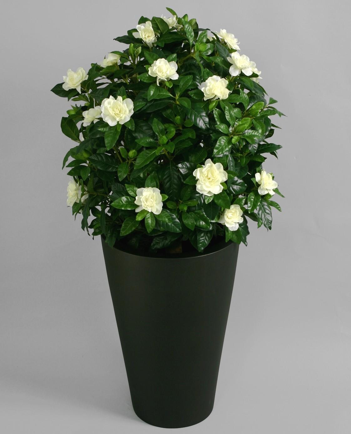 Gardenia, konstgjord blomma, vit
