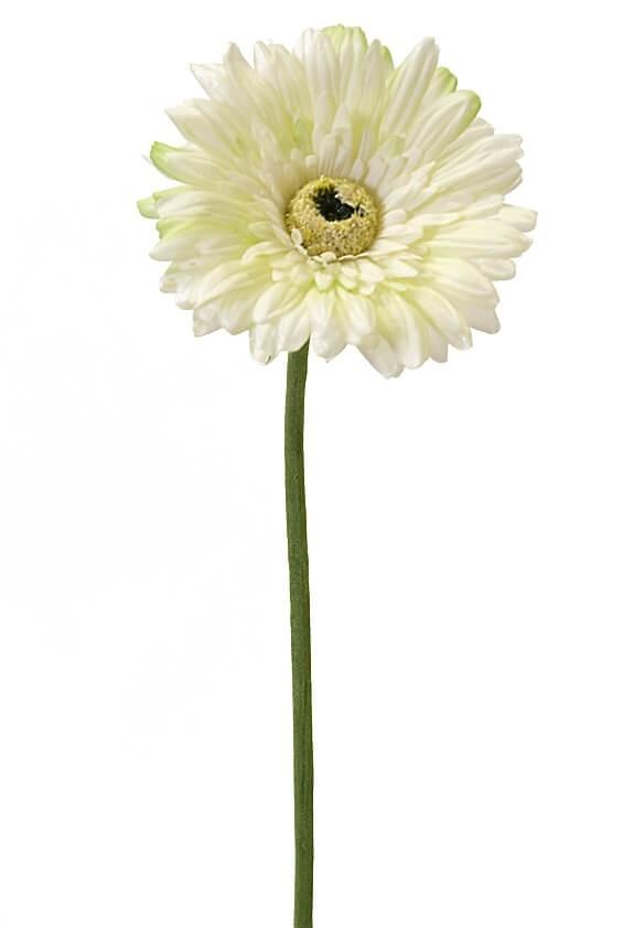 Gerbera, vit, lime, konstgjord blomma