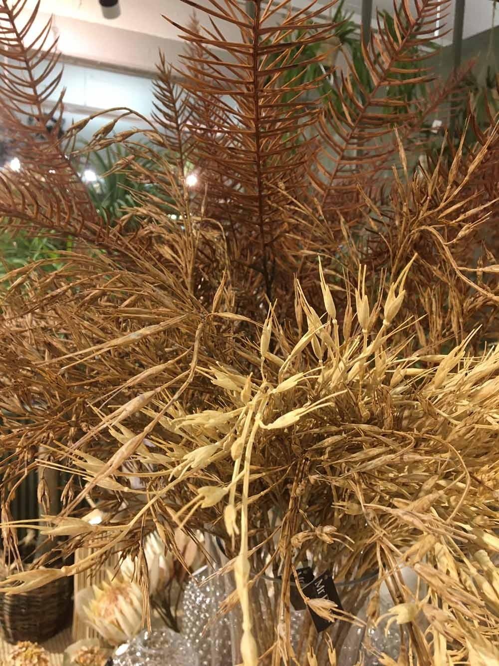 Gräs, sandbruna havreliknande ax, konstgjort