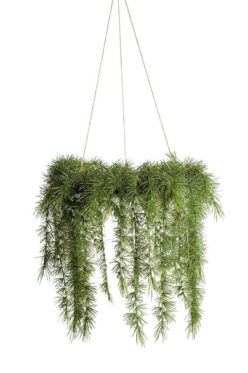 Granriskrans, hängande, konstgjord