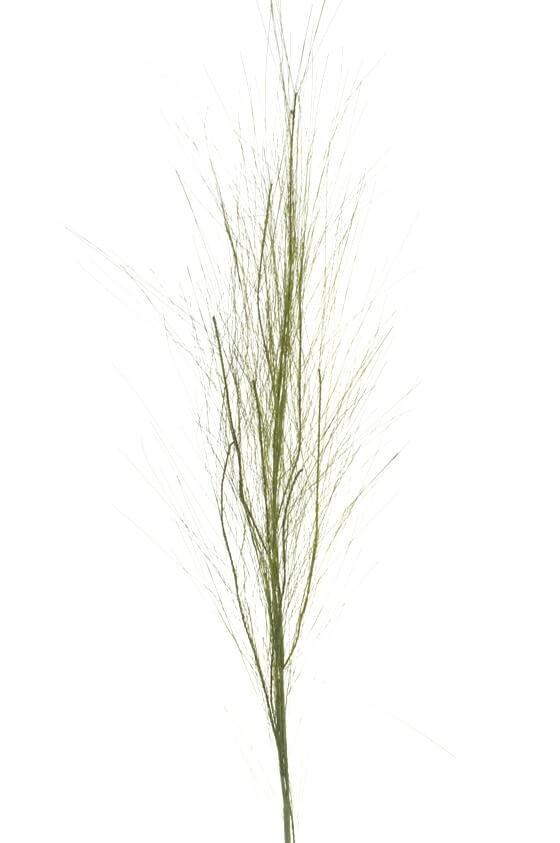 Gräs, konstgjort