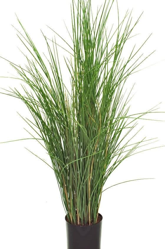 Gräs i kruka, konstgjord krukväxt