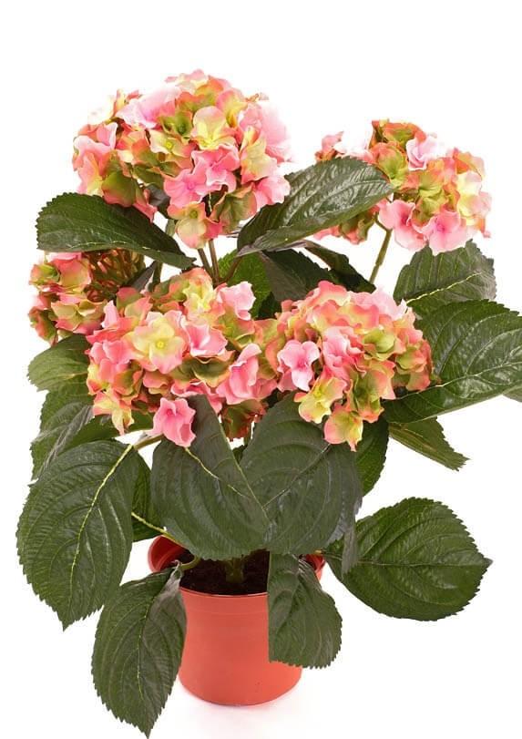 Hortensia, rosa grön, konstgjord krukväxt