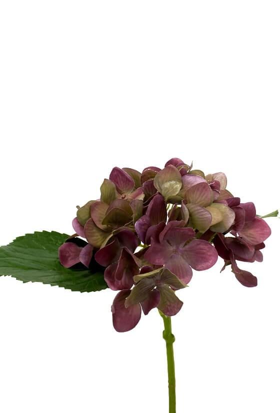 Hortensia, vinröd, konstgjord blomma