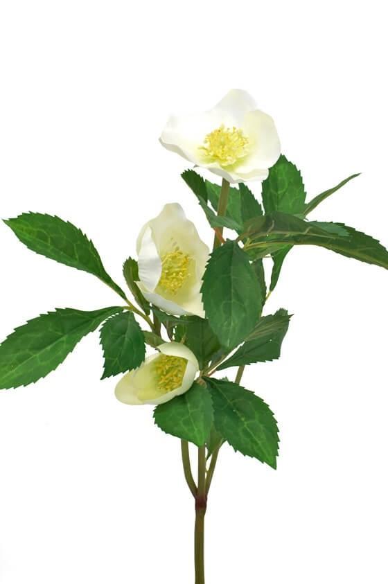 Julros, creme, konstgjord blomma