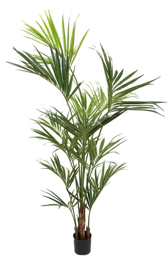 Kentia palm, konstgjord