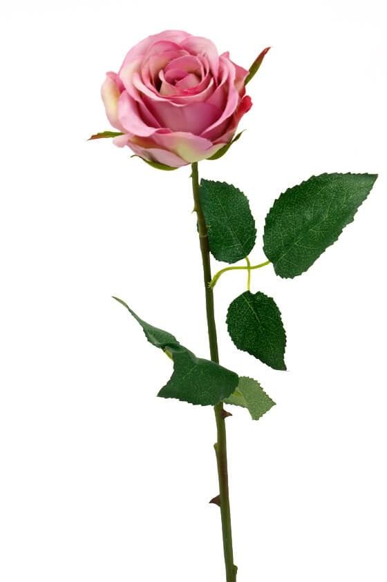 Ros, rosa, cerise, konstgjord blomma