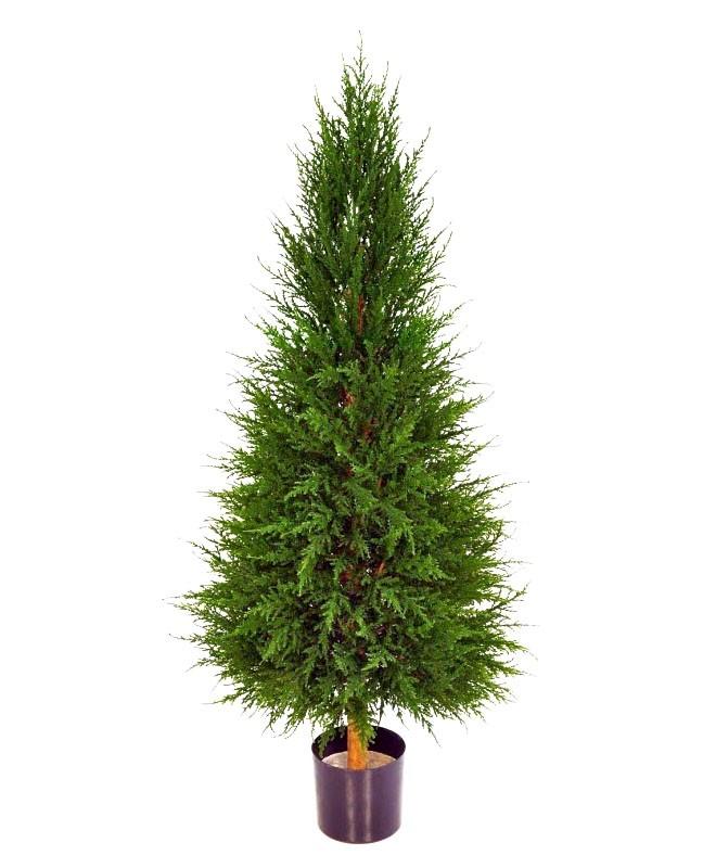 Cypress, konstgjord