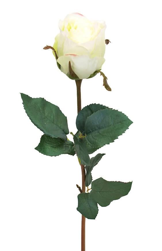 Ros, vit lime, konstgjord blomma