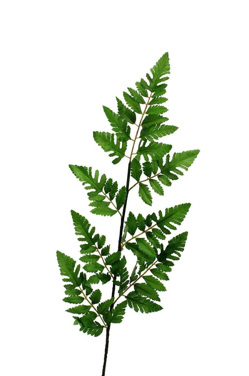 Läderblad, konstgjord kvist