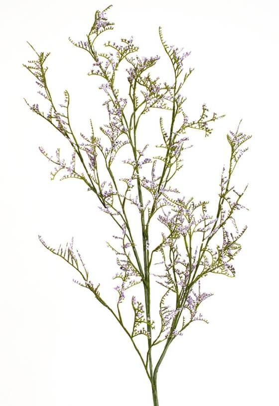 Limonium, lila, konstgjord kvist