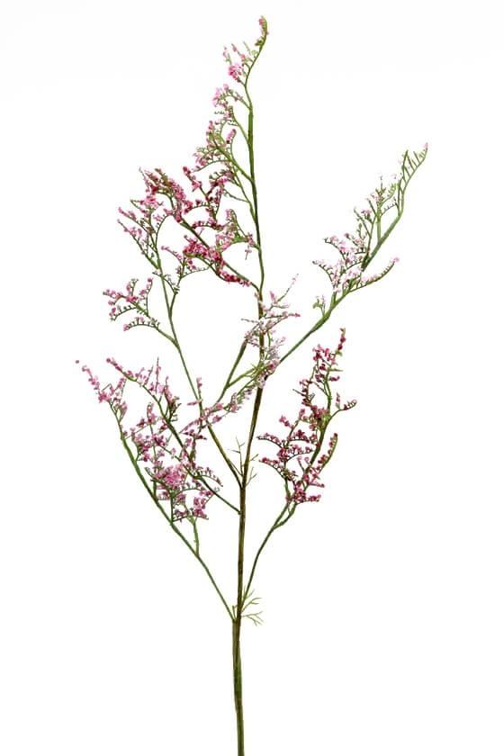 Limonium, rosa, konstgjord kvist