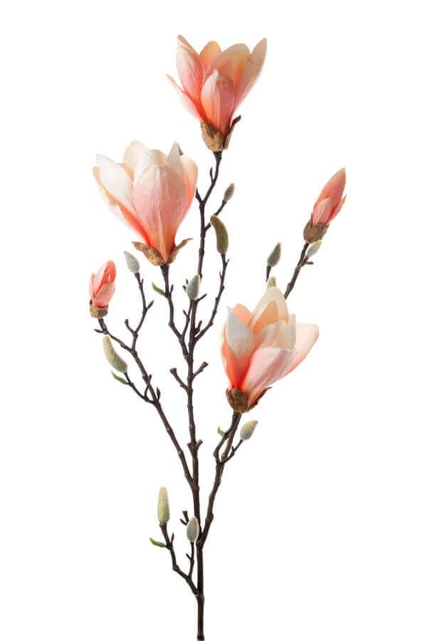 Magnolia, aprikos, konstgjord blomma