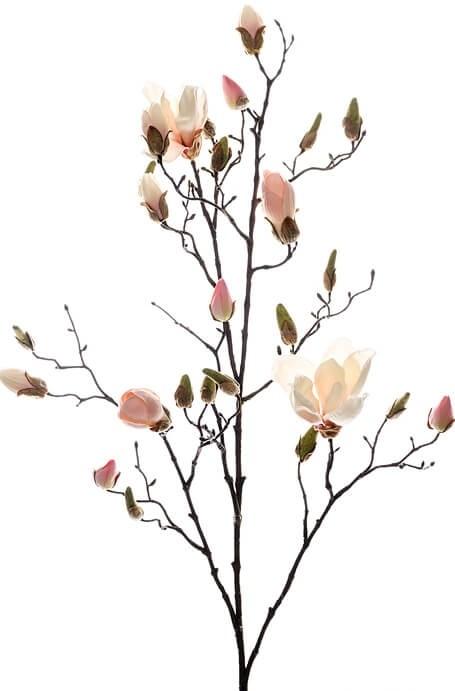 Magnolia, rosa, konstgjord blomma