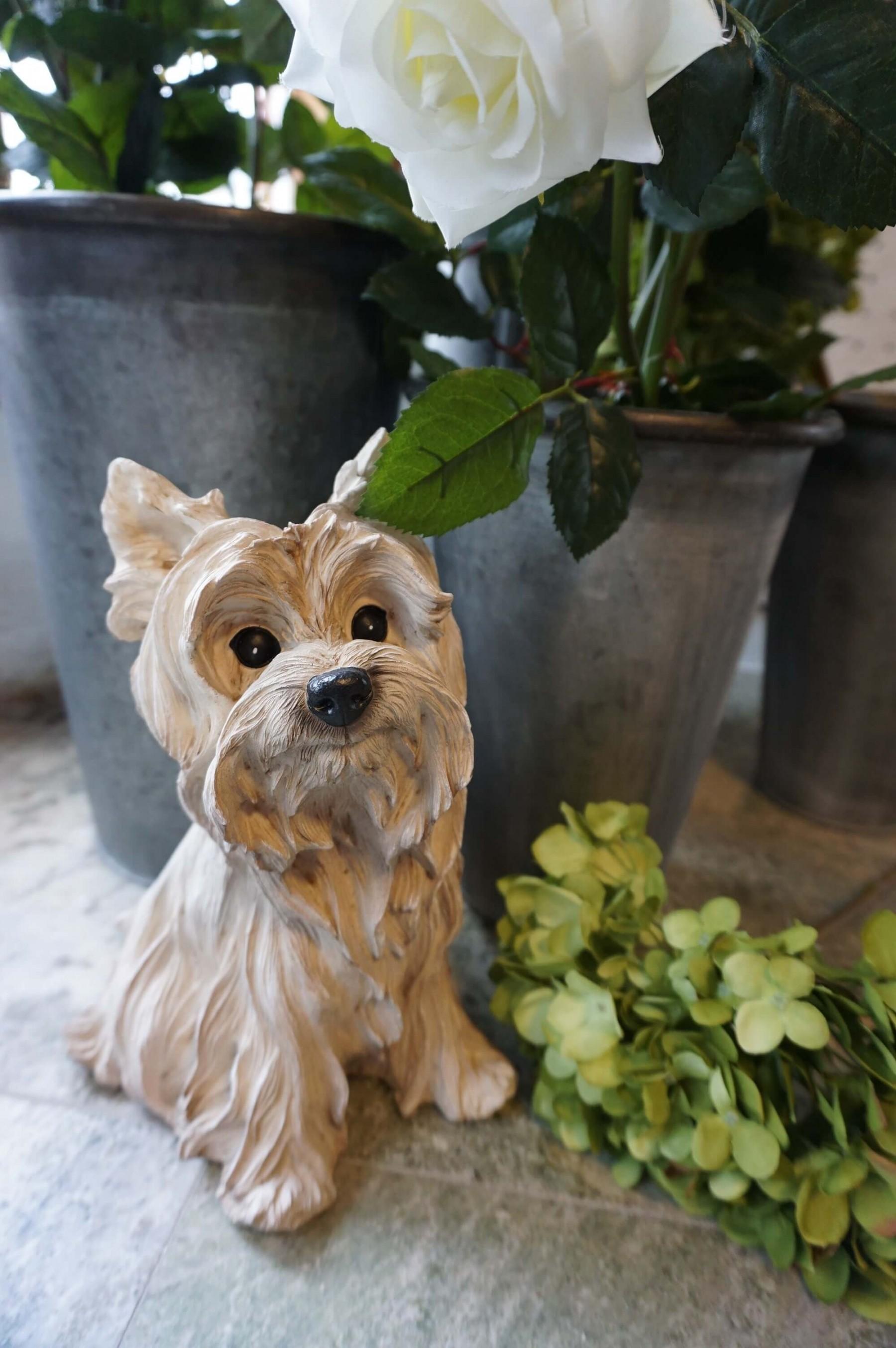 Mika, Hunddekoration