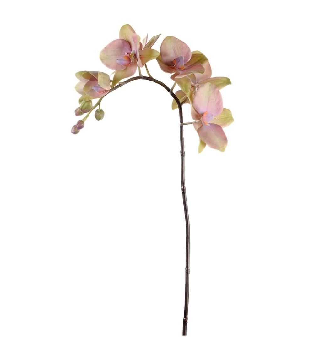 Orkidéstängel, lime lila, konstgjord