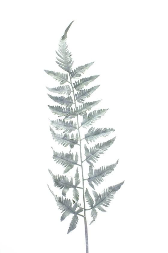 Ormbunksblad, grå, konstgjord