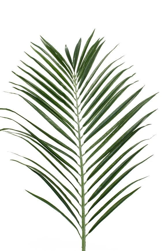 Palmblad, konstgjort