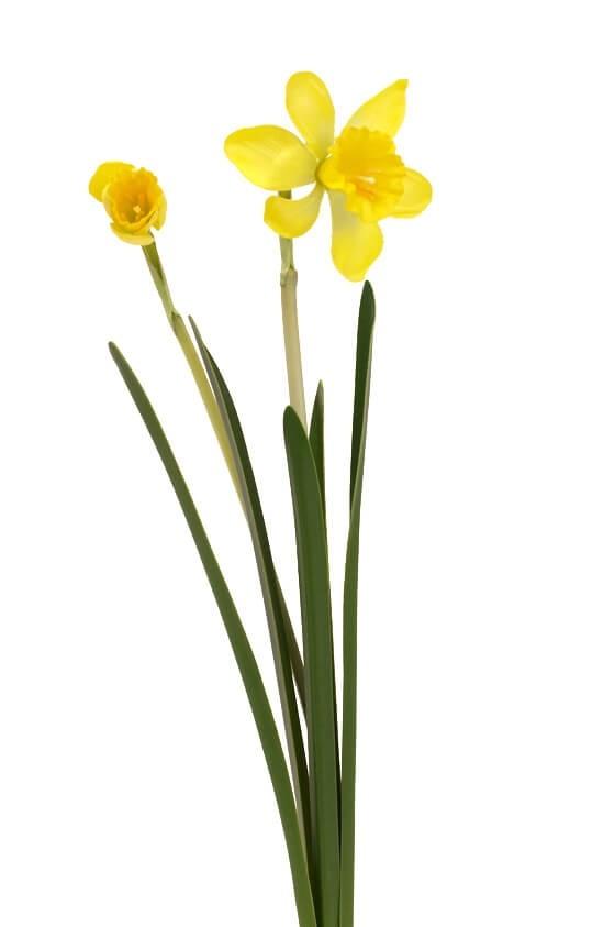Påsklilja, konstgjord blomma