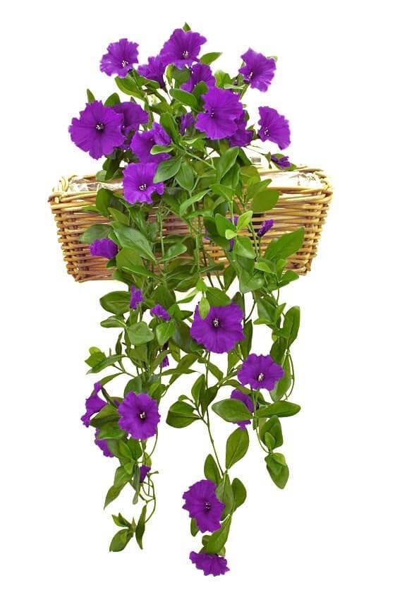 Petunia häng i kruka, blå, konstgjord