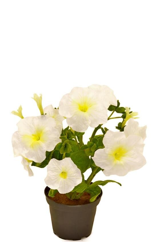 Petunia i kruka vit, konstgjord