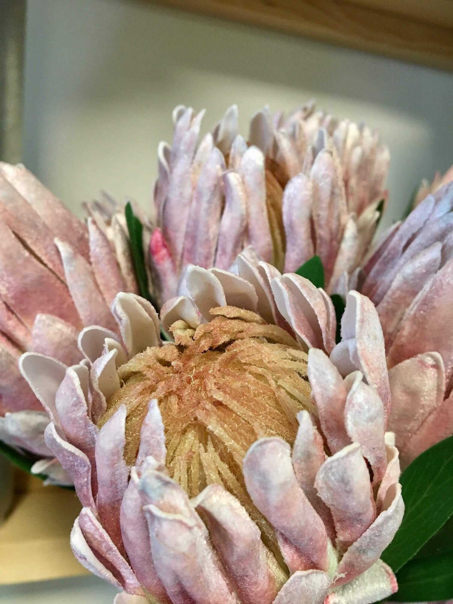 Protea rosa, konstgjord blomma
