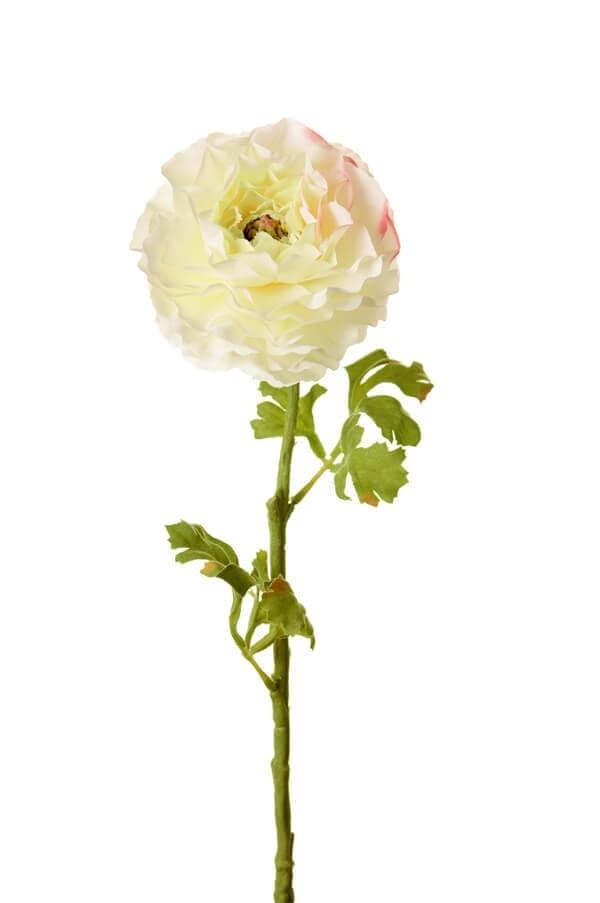 Ranunkel, creme, konstgjord blomma