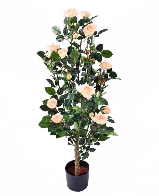 Ros i kruka, rosa, konstgjord krukväxt