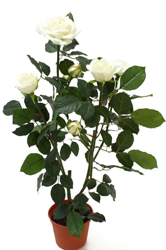 Ros i kruka, vit, konstgjord