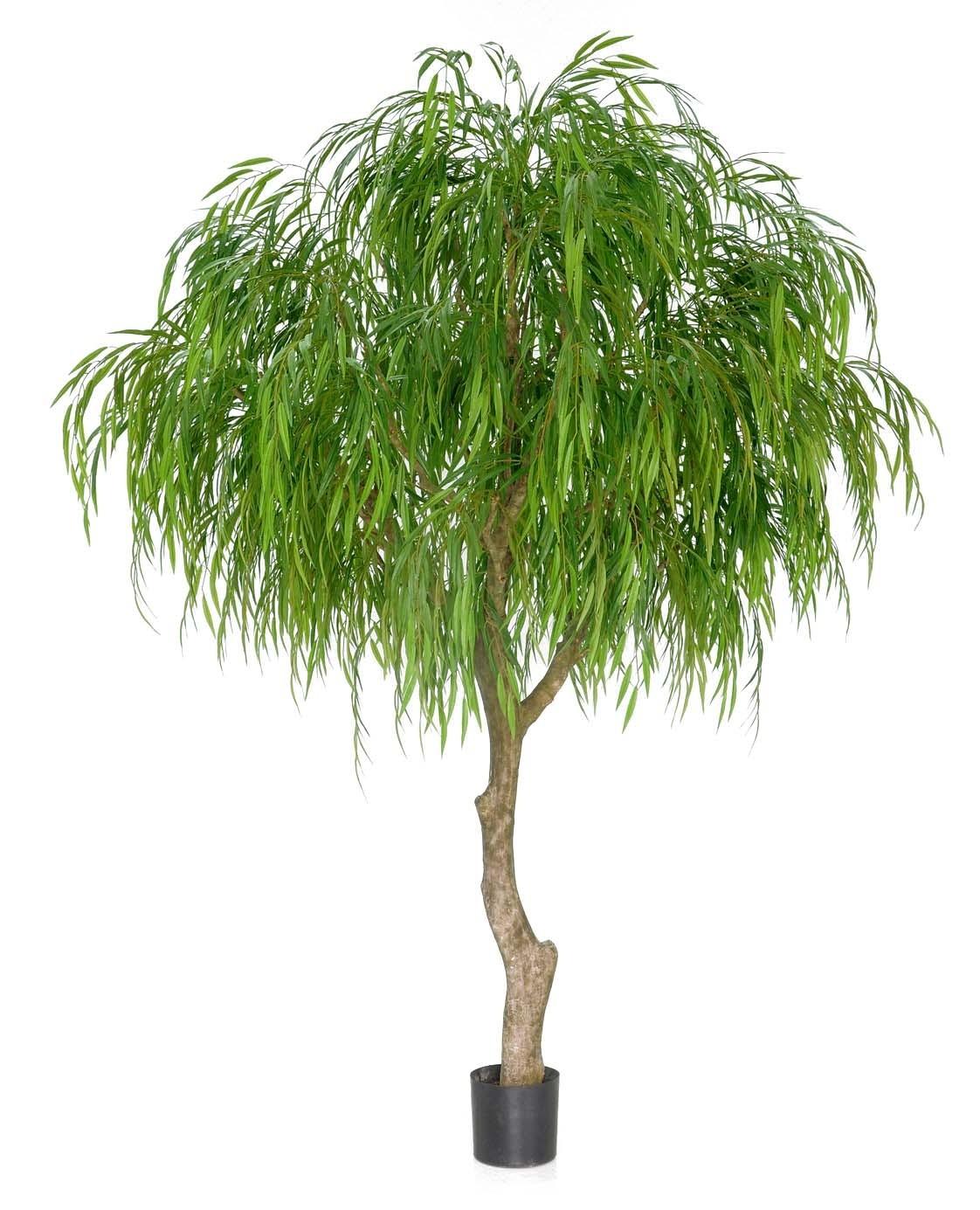 Tårpil, Weeping willow tree, konstgjort