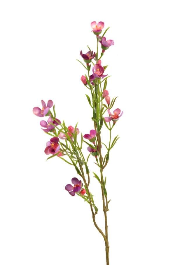 Vaxblomma, ljuslila, konstgjorda blommor