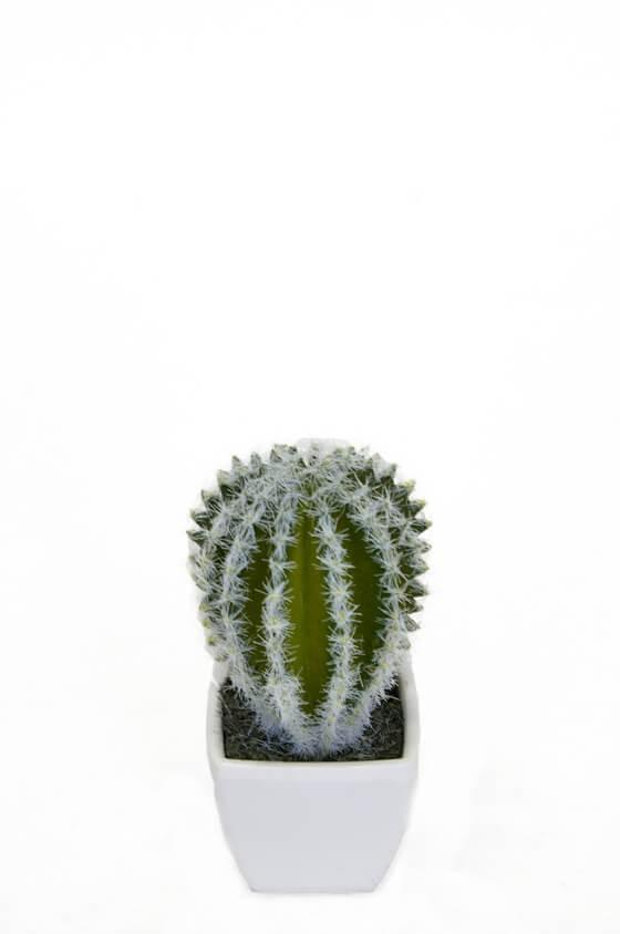 Kaktus, mini, konstgjord