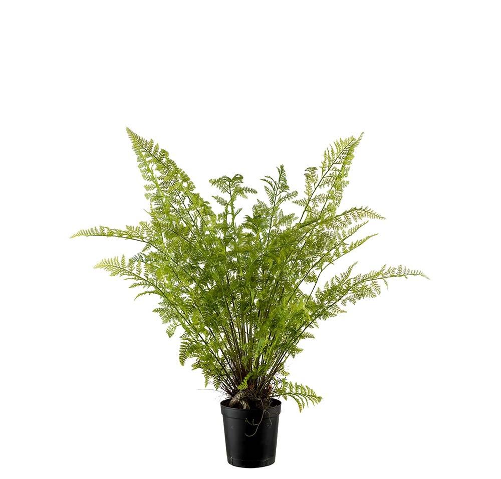 Ormbunke i kruka, konstgjord krukväxt