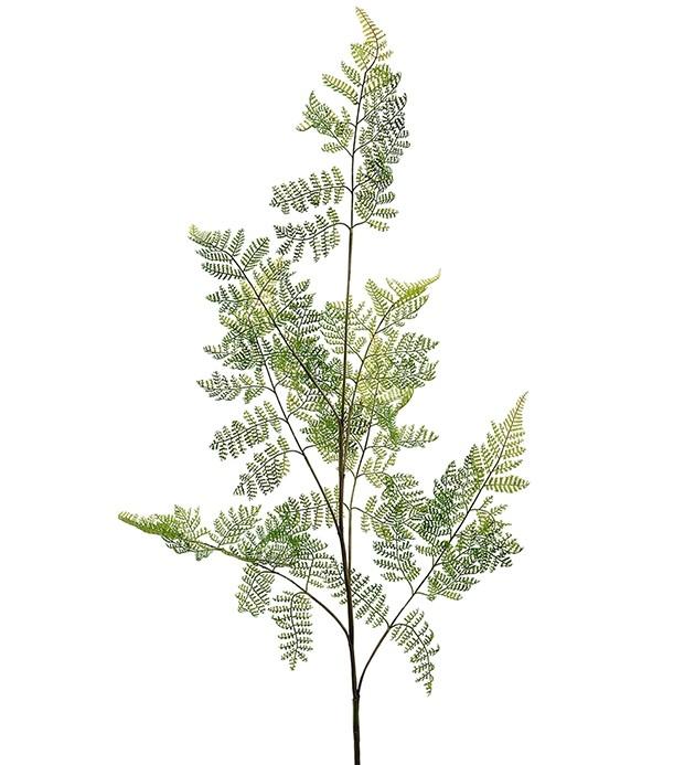 Ormbunksblad, vårgrönt, konstgjort