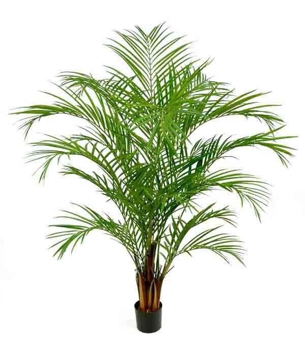 Areca palm, konstgjord palm